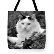 Sampson In Black And White Tote Bag