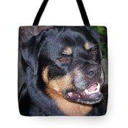 Sampson Tote Bag