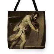 Samson In The Treadmill Tote Bag
