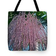 San Clemente Sunday Tote Bag