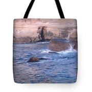 San Diego 11 Tote Bag