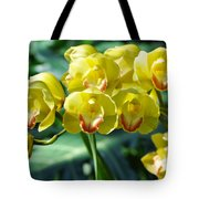 San Diego Yellow Orchids Tote Bag