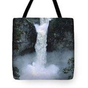 San Rafael Falls  Tote Bag