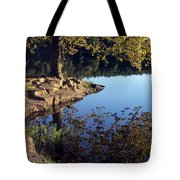 Sanctuary Tote Bag by Angelina Vick