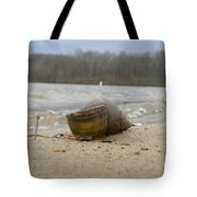 Sand And Shell Tote Bag