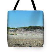 Sand Dune Panorama  Tote Bag