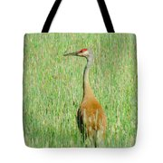Sand Hill Crane Tote Bag