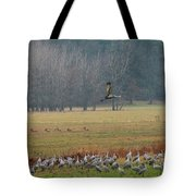 Sand Hill Crane Migration Tote Bag