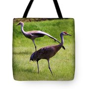Sand Hill Crane Of 2 Tote Bag