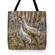 Sand Hill Crane Pair Tote Bag