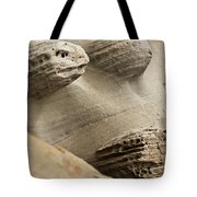 Sand Spirits Tote Bag