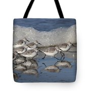 Sanderlings Tote Bag