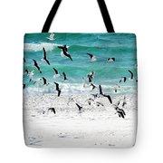 Sandestin Seagulls B Tote Bag