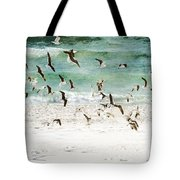 Sandestin Seagulls D Tote Bag