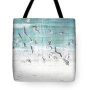 Sandestin Seagulls E Tote Bag