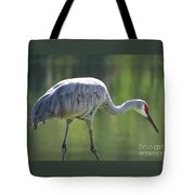 Sandhill And Green Pond Tote Bag