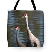 Sandhill Crane Couple By The Pond Tote Bag