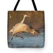 Sandhill Crane Dance Tote Bag