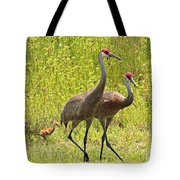 Sandhill Crane Family Tote Bag