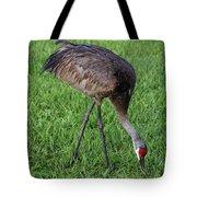 Sandhill Crane II Tote Bag
