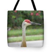 Sandhill Crane In Sarasota Tote Bag
