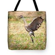 Sandhill Crane Morning Stretch Tote Bag