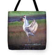 Sandhill Crane Painted Tote Bag