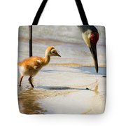 Sandhill Crane With Chick Tote Bag