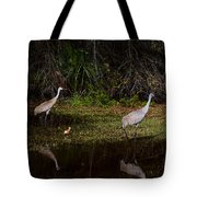 Sandhill Cranes And Chicks Tote Bag