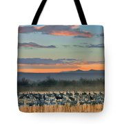 Sandhill Cranes And Snow Geese Tote Bag
