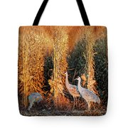 Sandhill Cranes At Sunrise Tote Bag