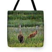 Sandhill Cranes II Tote Bag