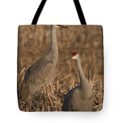 Sandhill Cranes On Watch Tote Bag