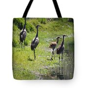 Sandhill Family By The Pond Tote Bag