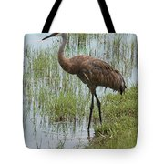 Sandhill In The Marsh Tote Bag
