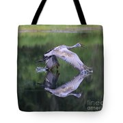 Sandhill Retreat Tote Bag