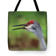Sandhill Song Tote Bag