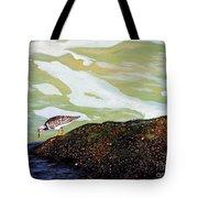 Sandpiper At Ponce Inlet Tote Bag