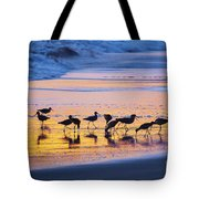 Sandpipers In A Golden Pool Of Light Tote Bag
