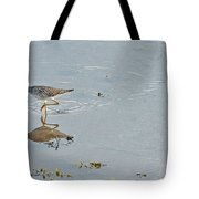 Sandpiper's Mirror Tote Bag