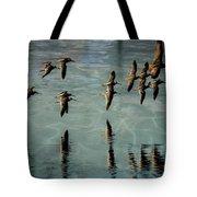 Sandpipers Shore Bound Tote Bag