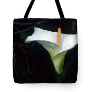 Sandra's Lilly II Tote Bag