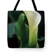 Sandra's Lilly IIi Tote Bag