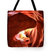 Sandstone Dog Abstract Tote Bag