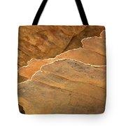 Sandstone Fins Tote Bag