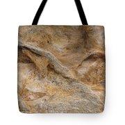 Sandstone Formation Number 4 At Starved Rock State Tote Bag