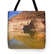 Sandstone Illusions Tote Bag