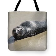Sandy Beach With Harbor Seal Tote Bag