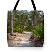 Sandy Path In Hunting Island South Carolina Tote Bag