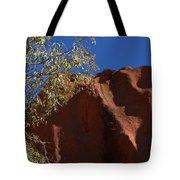 Sandy Rock Tote Bag